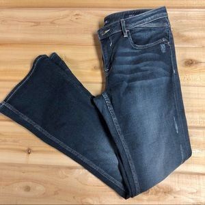 American eagle original bootcut jeans- short